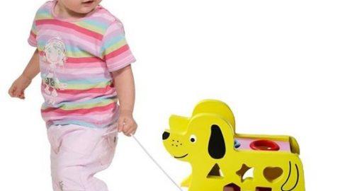 Shopee ƯU ĐÃI KHỦNG đến 39% cho Xe kéo chó, thả hình, đập bóng bằng gỗ - Đồ chơi gỗ